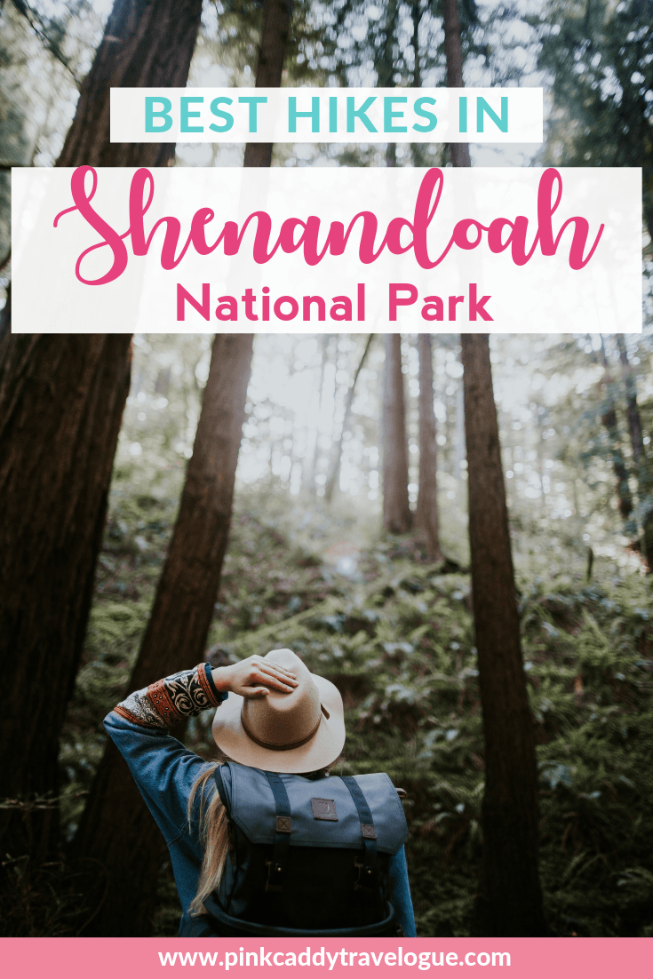 With over 500 miles of trails in the park, it can be hard to choose which one to do! Here's a list of the top 10 best hikes in Shenandoah National Park #hiking #usa #shenandoah #virginia