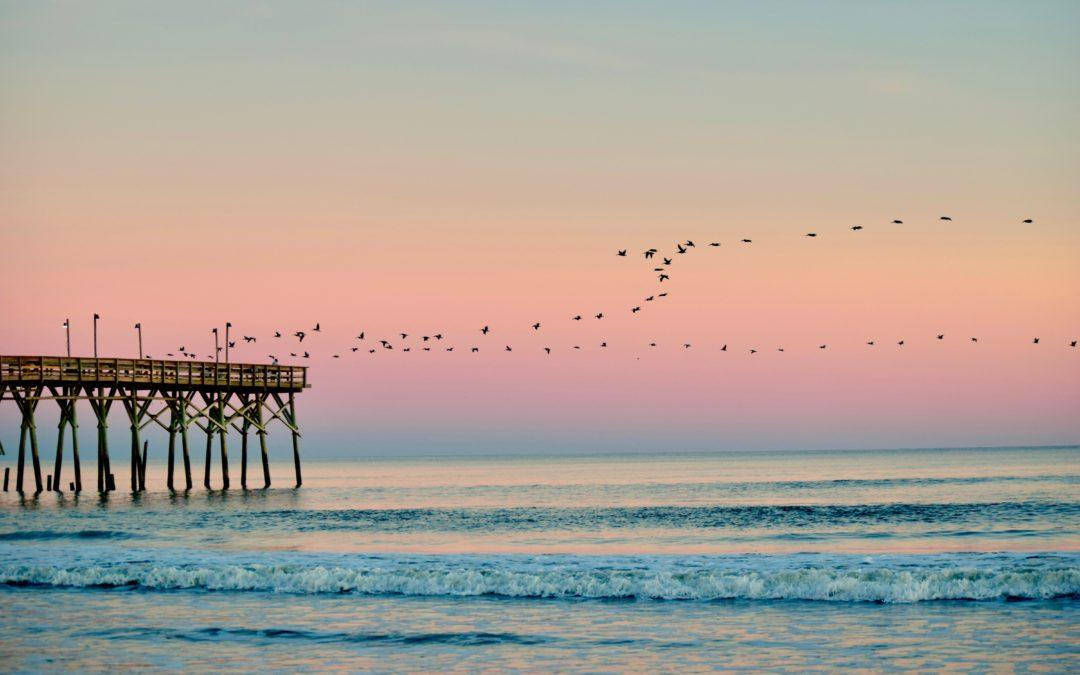 Fun Things to do in Wilmington NC